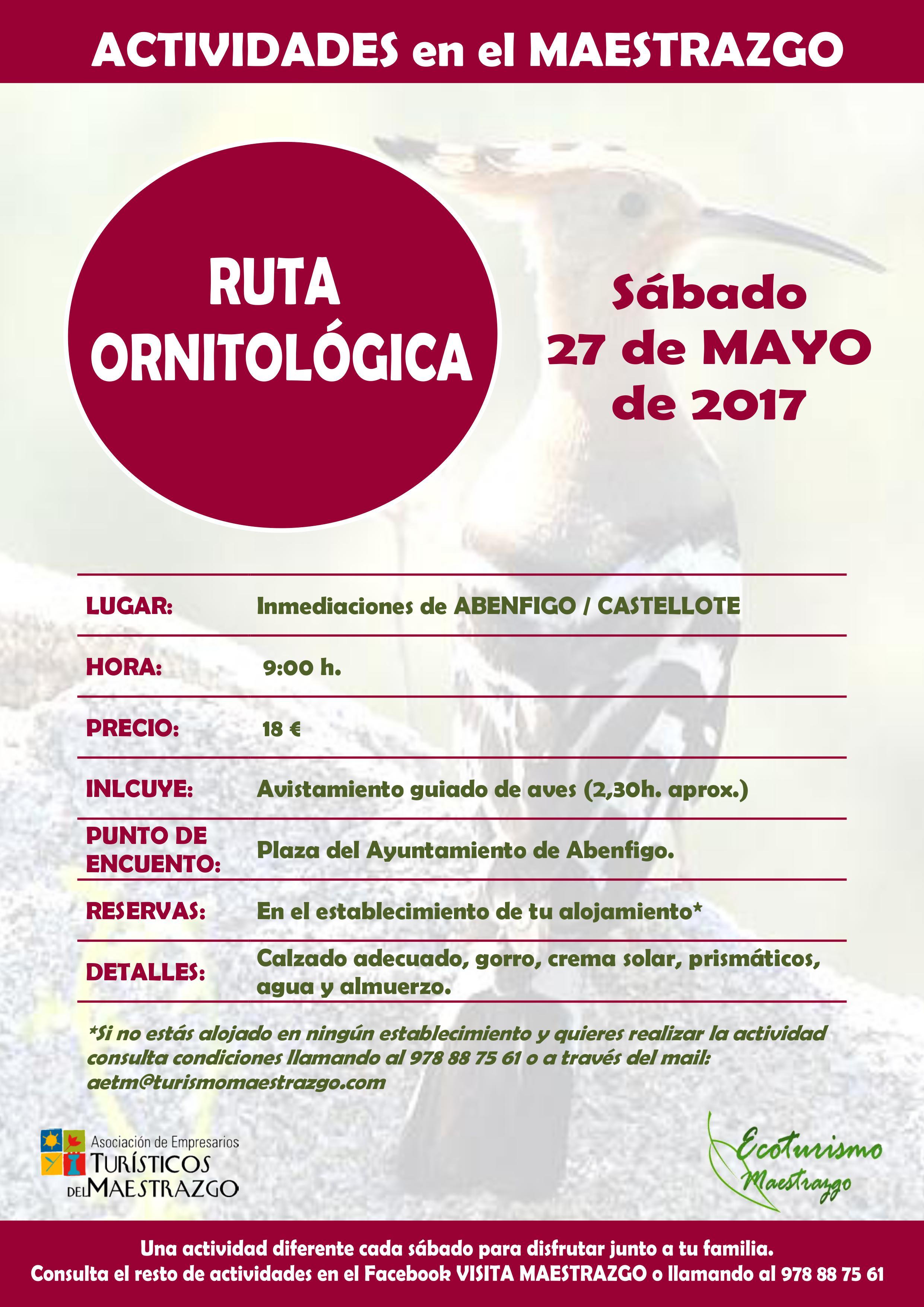 Ruta ornitológica Castellote